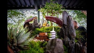 FAIRY garden BONSAI. Keep the earth clean and have FUN doing it.