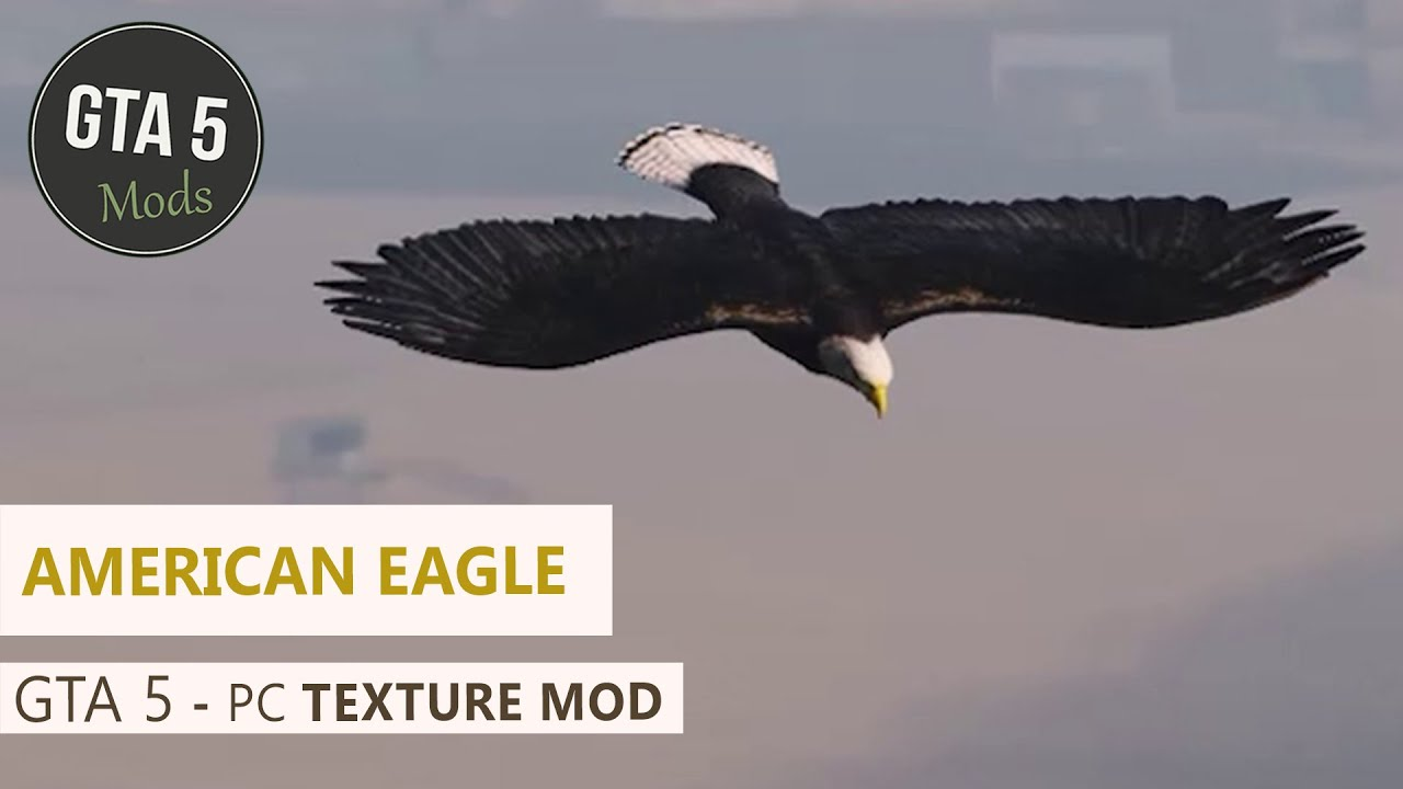 GTA 5 PC - American Eagle [Texture Mod] - YouTube