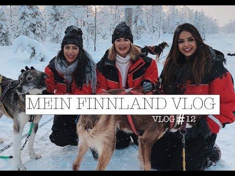 MEIN LAPPLAND VLOG I Polarlichter, Schneehunde, Challenge I Vlog #12 I Taraneh