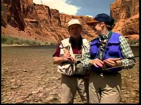 Fly Fishing Adventues, Arizona's Lee's Ferry Trout