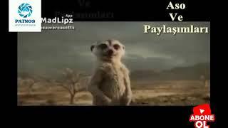 aso ve paylaşımları Kürtçe komedi 20