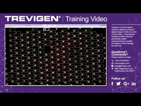 Trevigen Comet Analysis Software- Training Video