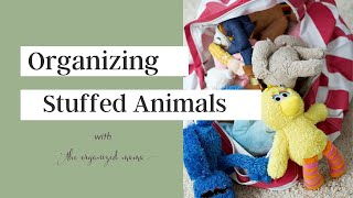 How To Organize Stuffed Animals with Creative QT
