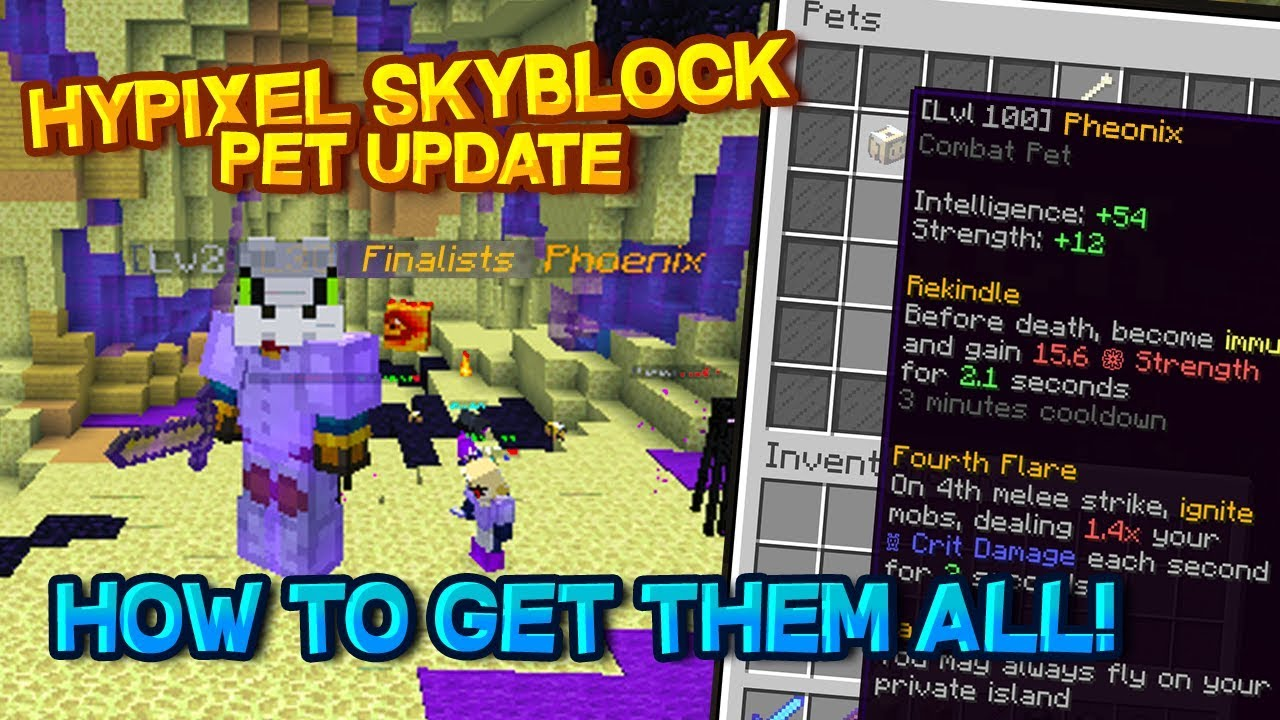 How And Where To Get Pets On Hypixel Skyblock Pets Update Guide Youtube