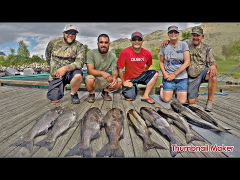 Repeat More king salmon fishing Nisqually river by DJ Fish