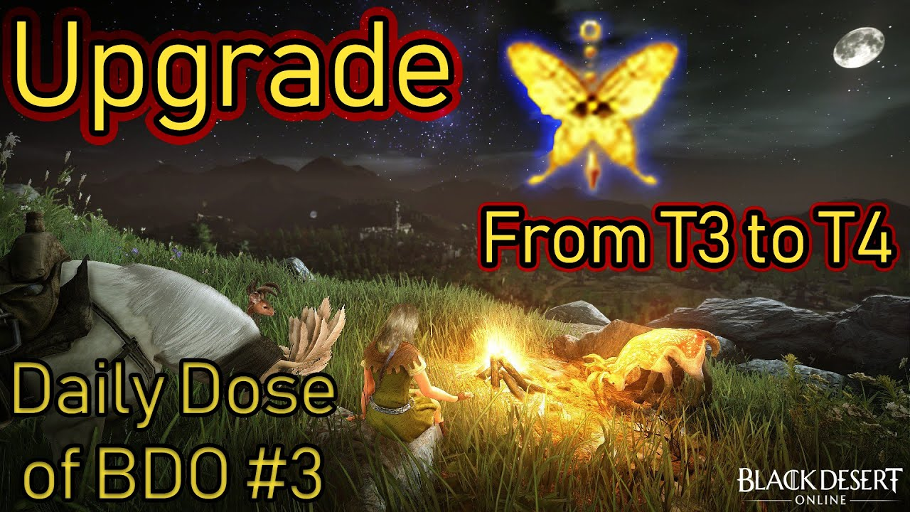 T3 to T4 Fairy Upgrade | Daily Dose of BDO #3