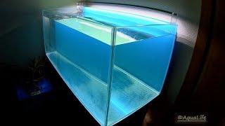 видео Как сделать аквариум своими руками дома?