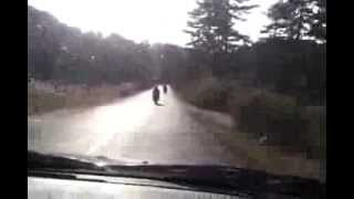 Gambar cover Moto Club BEARS ride in mountains II part