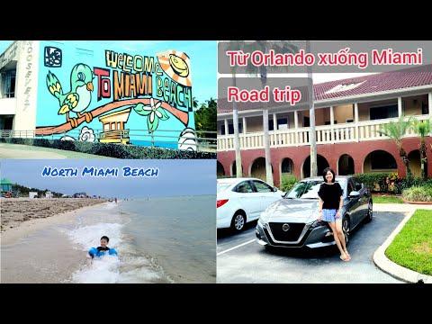 Lái xe từ Orlando xuống Miami tắm biển | Florida du hí