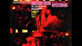 9 Question Mark And The Mysterians Don