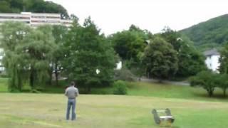 Kleiner Drache im Park.MPG