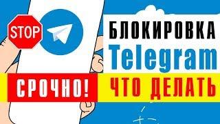 Телеграмм не работает 29.04.2018 что делать?