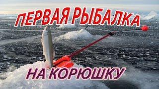 Первая зимняя рыбалка сезона 2017 - 2018 г. на корюшку.