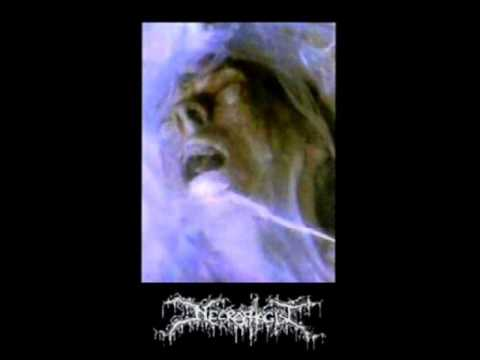 Клип Necrophagist - Necrophagist