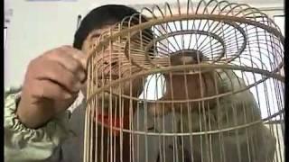 鸟笼的制作 新闻 中国网络电视台 3