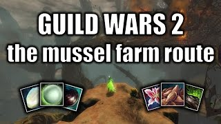 Guild Wars 2 gold guide: the mussel farm route (June 2016)