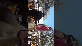I love u gaura bhakti song