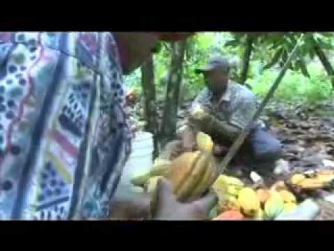 CONACADO - Working in Unity (by Fairtrade International)