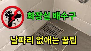 화장실 배수구 날파리 없애는 꿀팁
