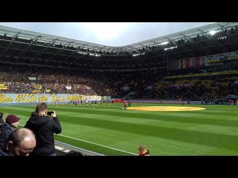 Dynamo Dresden team composition atmosphere