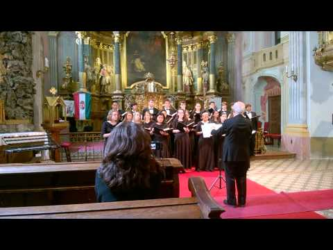 Richard Montgomery High School's Choir in Budapest - The Song