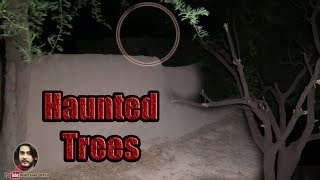 Woh Kya Tha 11 September 2019 Haunted Trees Visit By Sherry Khan