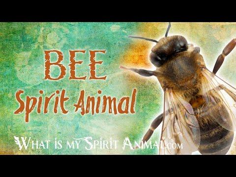 bee-spirit-animal-|-bee-totem-&-power-animal-|-bee-symbolism-&-meanings