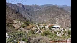 La palma, Jacala de ledezma, Hidalgo.