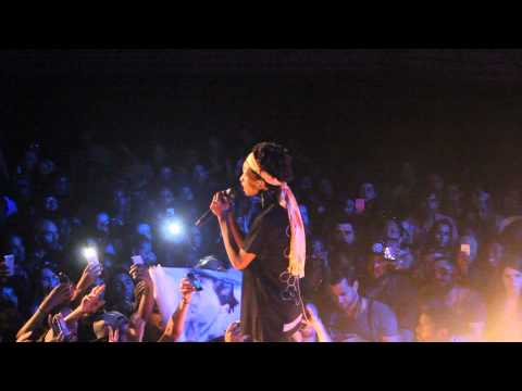 Willow Smith- Female Energy- Live at Afropunk Paris 2015