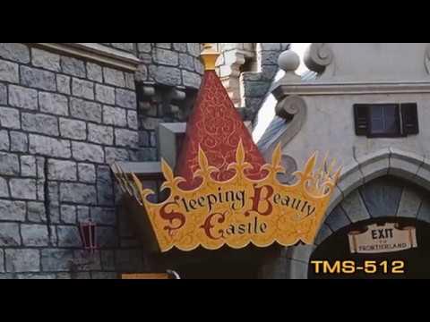Youtube Sleeping Beauty Castle Walk-Through