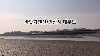 바닷가 멋진 팬션펜션매매/안산시 대부도