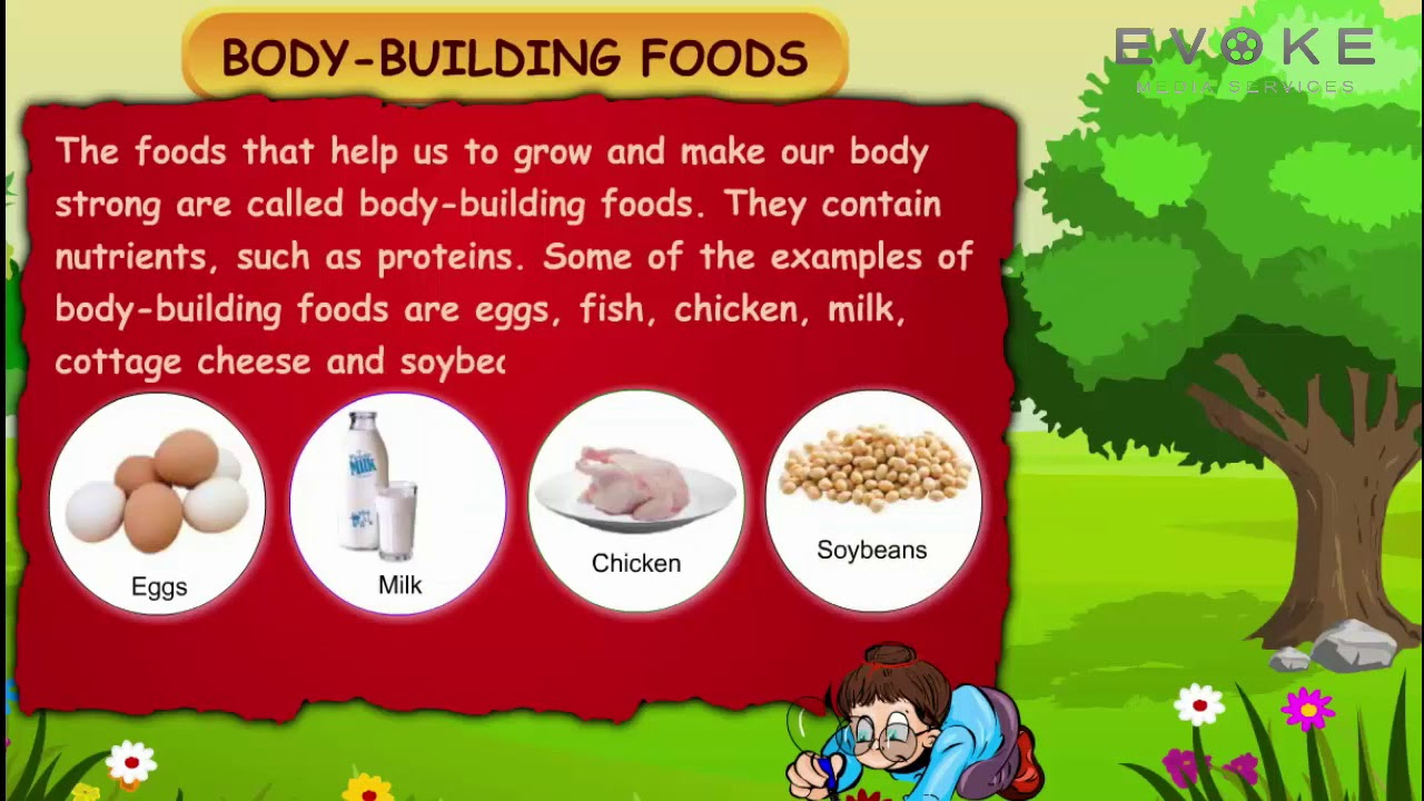 Body Building Foods Kids Knowledge English Youtube