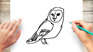 How to Draw Barn Owl Step by Step for Kids