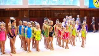 Гимнастика групповые соревнования