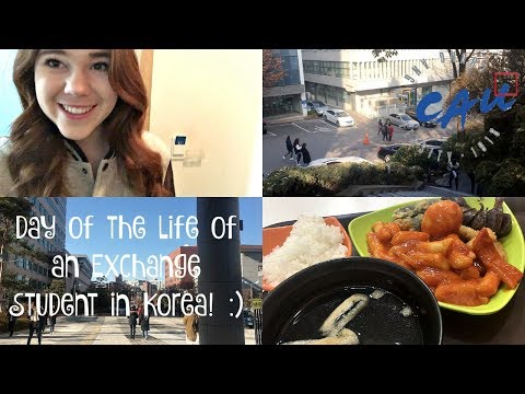 (REAL) Day in the Life of an Exchange Student in Korea!!