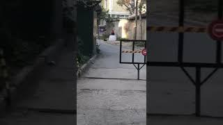 Кто потерял невесту крым приколы любителей в белом Симферополь крым Россия