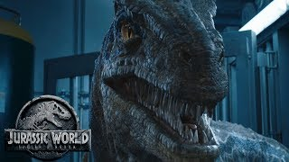 What is Blue's DNA Needed For? | JWFK Final Trailer Theory | Velociraptor