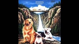 Топ 5 фильмов про собак