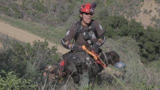 Dog Rescue By Los Angeles Animal Services On Easter Sunday