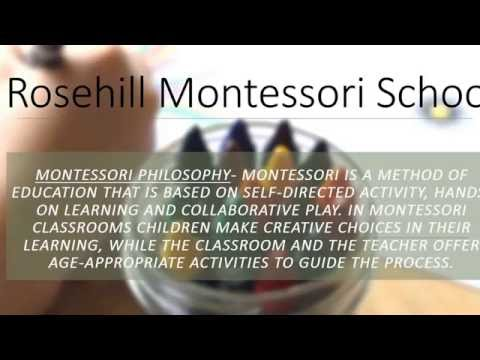 Rosehill Montessori School Analysis