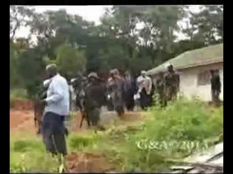 Peter Mutharika Treason Case