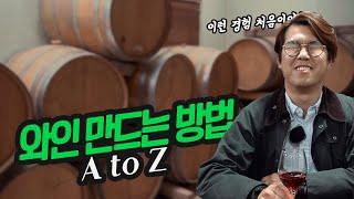 와인을 만드는 방법 AtoZ 포도부터 술이되기까지 어떻…