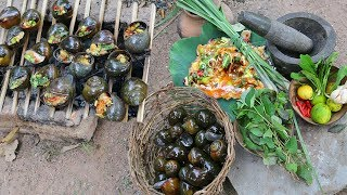 Primitive Technology: Find snail for food - Cooking snail with skills eating delicious
