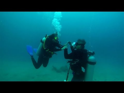 Couple Get Engaged While Scuba Diving