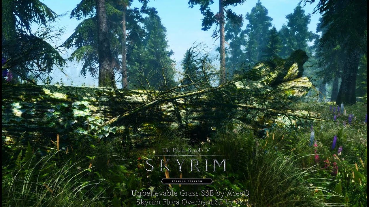 Skyrim Special Edition Mods #7: Skyrim Flora Overhaul + Unbelievable Grass