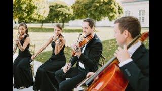 """SUGAR OFFICE presents: Streichquartett (Tango """"por una cabeza"""")"""