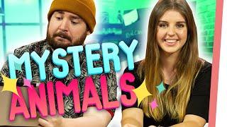 MYSTERIÖSE Tiere – könnt IHR alle Tiernamen erraten?
