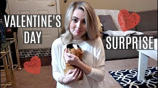 HUSBAND BUYS WIFE A PUPPY FOR VALENTINE'S DAY