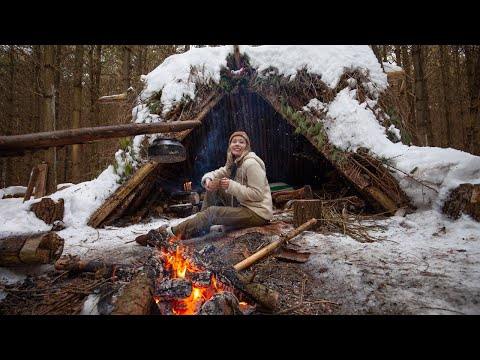 My 1st SOLO Winter Overnight! Bushcraft Shelter, Cooking on Coals, Campfire Breakfast