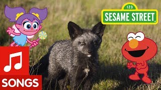 Sesame Street: Dance Like a Fox! | Animal Dance #1